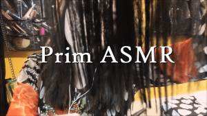 Video Of The Day 104 [Prim ASMR] – The Easy Ride To Relaxation