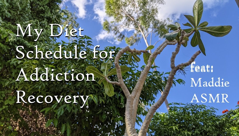my diet schedule for addiction recovery